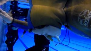 freediving training static apnea