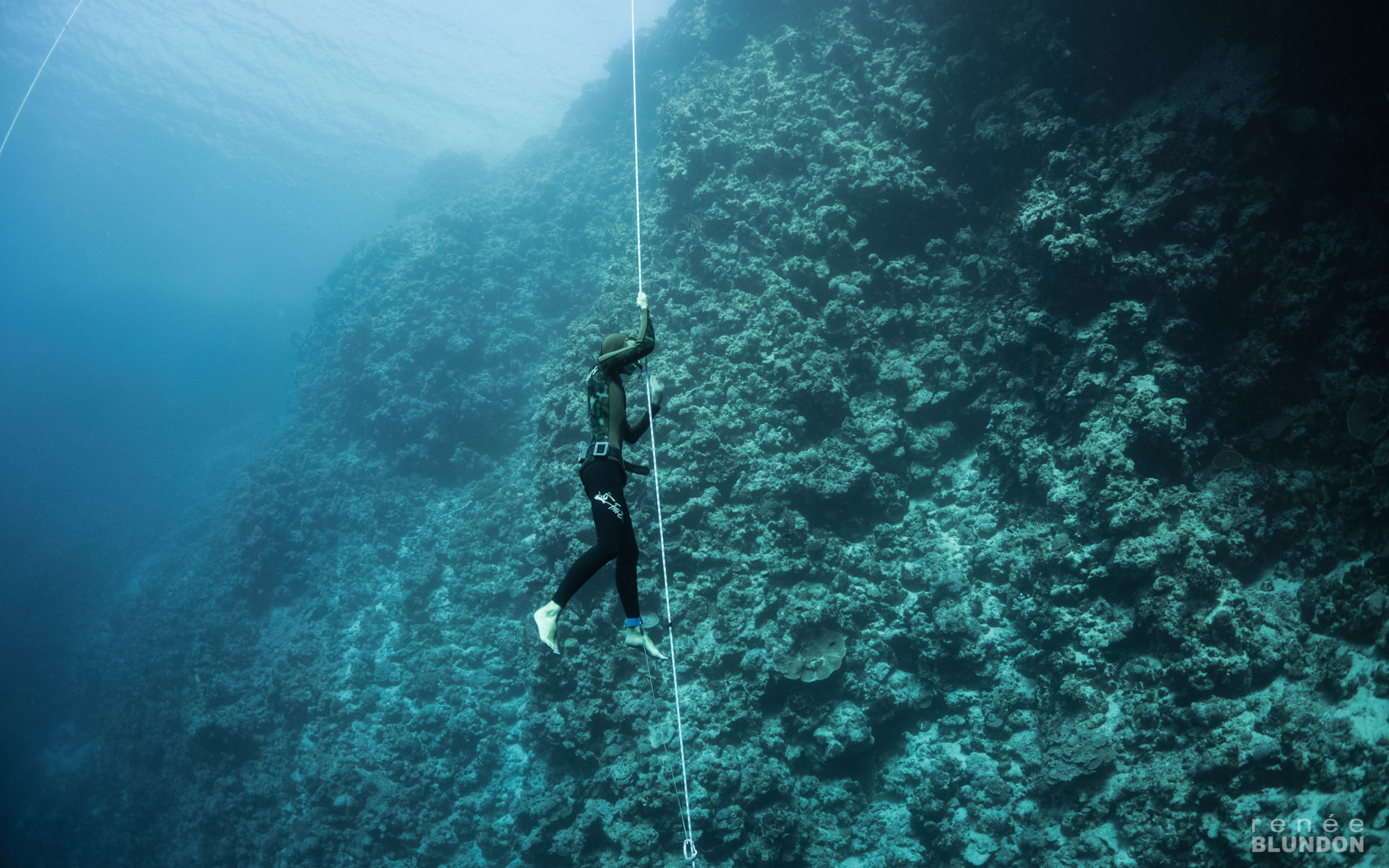 freediving instructor