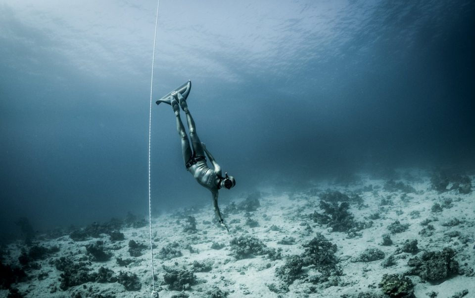 Freediving Instructor and Athlete