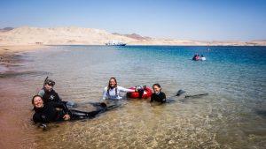 PADI Freediving Instructor Trainer